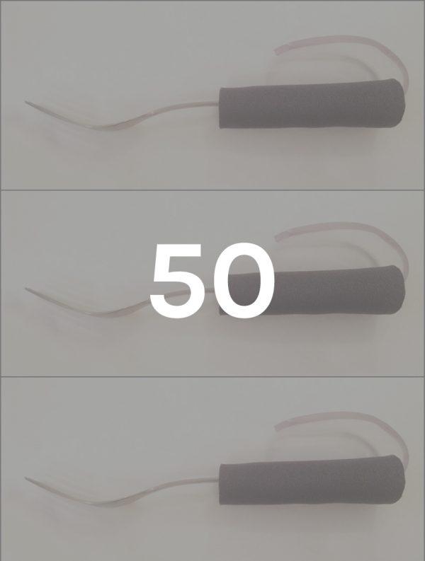 1fork-holder-cassithover-50